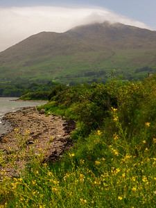 Slieve Foye and the shore of Carlingford Lough, Omeath