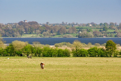 Lough Ennell in the distance, near Lilliput