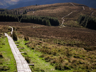 Wicklow Way boardwalk on White Hill