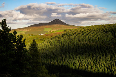 Great Sugarloaf from Crone Wood