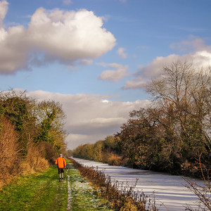 Royal Canal towpath at Westmanstown, near Lucan