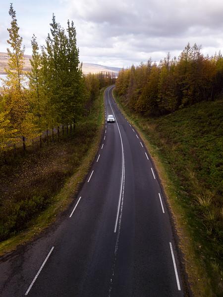 #22 Autumn Drives