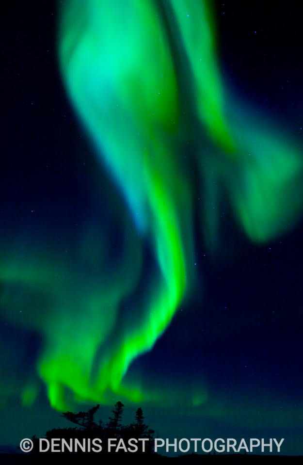 DANCING AURORA.  Aurora most often appear as shimmering curtains of green. Sometimes they dance in one place for many minutes, while at other times they snap across the sky like curtains in a stiff breeze.