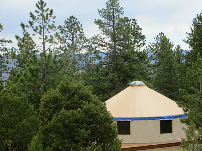 yurt through the trees