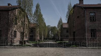 Living in Auschwitz