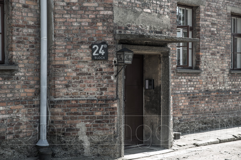 Living Conditions at Auschwitz 1
