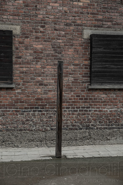 The Flogging posts