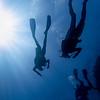 Scuba divers underwater, Barracuda Bommie Dive Site, Great Barrier Reef, Queensland, Australia