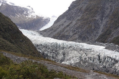 FOX GLACIER - SOUTH ISLAND