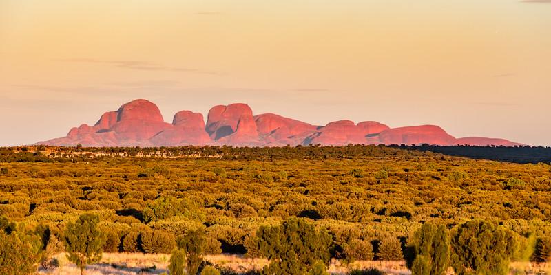 The Olgas at sunrise from Uluru