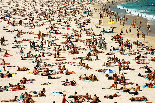 - basking<br /> Bondi Beach, Sydney