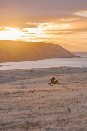 Stokes Bay Sunset II