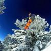 Austria-Snow-Sports