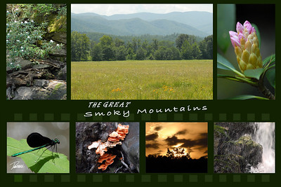 Item# 1024 -The Great Smoky Mountains- 12 x 18