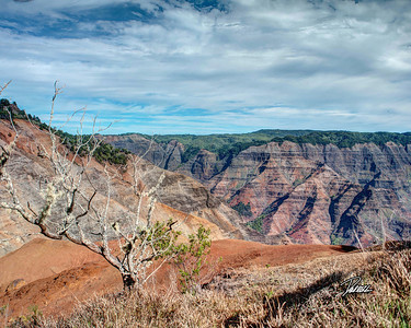 Item# 1184 -  Waimea Canyon - Kauai Hawaii 8x10 Print copy