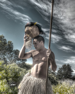 Item# 1169  -Warrior- - Kauai Hawaii  8x10 Print copy