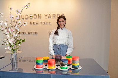 Stephanie Nass AVENUE MAGAZINE Presents the SALON DINNER & CONVERSATION about PUBLIC ART Featuring YVONNE FORCE VILLAREAL 10 Hudson Yards NYC, USA - 2017.04.06 Credit: Lukas Greyson