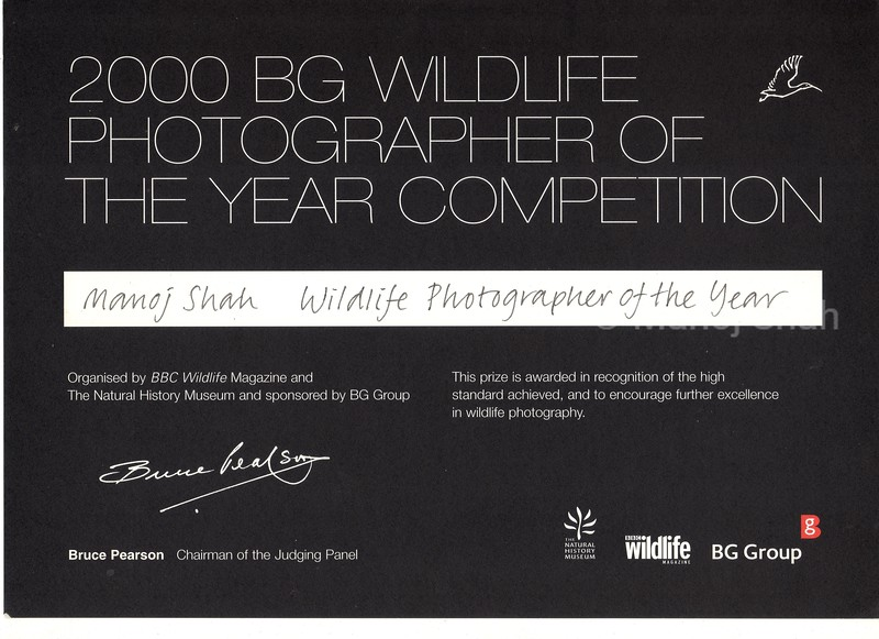 Wildlife photographer of the year 2000