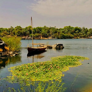 A Boat in the Nile