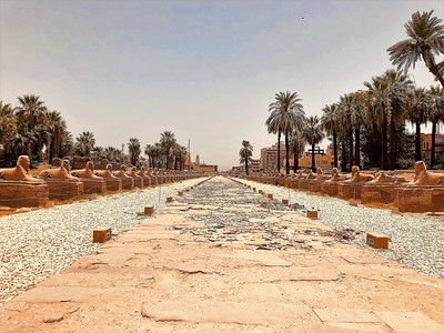 The Avenue of the Sphinxes