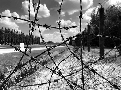 Barbed Wire at Dachau