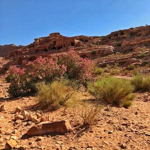 Petra the World Wonder