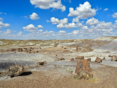 Petrified Rock Explosion
