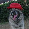 Chete (hat)_001