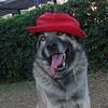 Chete (hat)_002