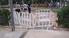 Dog Park_005