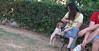 Chupi (puppy boy britany)_001
