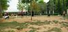 Ayora Dog Park_003