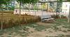 dog park change_003