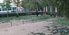 Dog Park10