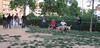 Dog Park15