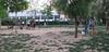 Dog Park13