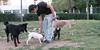 audrey (french bulldog), Aetana, West01