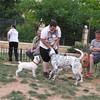 Ayora Dog Park03