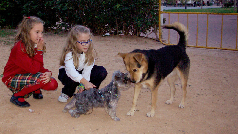 Pinky (boy pup), Children, Maddie_001