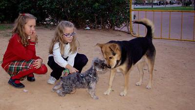 Pinky (boy pup), Children, Maddie_001