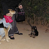 Cody, puppy, Maddie, costume, cowgirl, ayora, look, queen