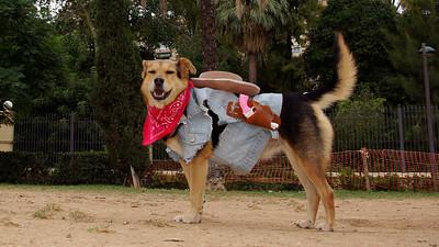 Maddie costume_064