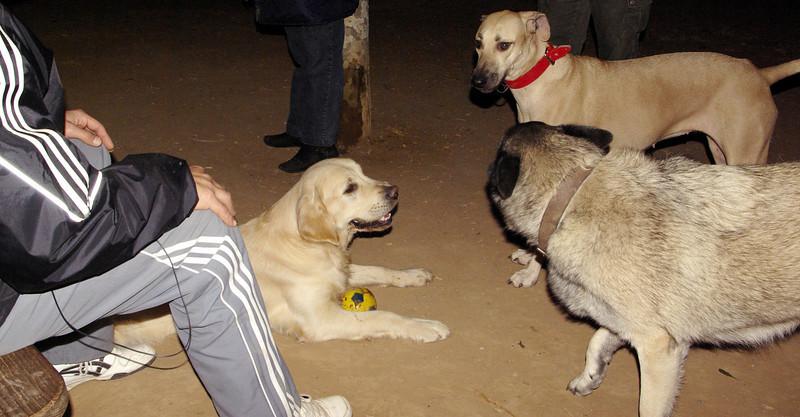 Bruce, Mimi, Chete_001