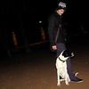 Braco (boy pup)_005