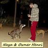 naya, owner, henri, people, naia, pitbull, ayora