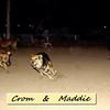 maddie, crom, ayora, run