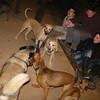 Bruce, Mimi, chete, max_001