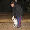 Kun (new boy puppy 3mo)_001