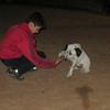 Kun (puppy boy)_004