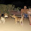 Maddie, mommy, pitbull, puppy, ayora, lola, the look